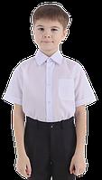 Рубашка для мальчика классика короткий рукав 116