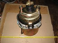 Тормозная камера энергоаккумулятор тип 24/24 задняя для МАЗ грузовой в сборе