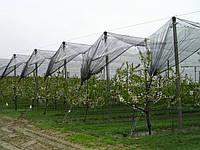 Сетка затеняющая / Сітка затіняюча 80% 3,2м*100м. 320м.кв. (на 7-8лет)