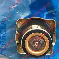 Крышка радиатора Ваз 2101 2102 2103 2104 2105 2106 2107 АЛЯСКА медь