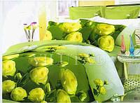 Комплект евро постельного белья  Ранфорс Платинум Viluta Вилюта 9951