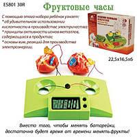 Академия мален испытателей ES80130R  Фруктовые часы,в кор. 22,5-6-16,5см