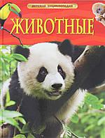 Животные. Детская энциклопедия, 5-94087-727-3, 978-5-353-05838-0