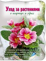 Уход за растениями в квартире и офисе, 978-5-699-45686-4