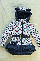 Качественная куртка для девочки с Микки-Маусами и ушками | Весна 2016