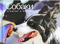 Собаки. Храбрые и верные. Фотоальбом, 978-5-389-05620-6