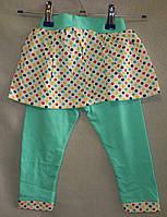 Лосины с юбкой на девочку 1 - 8 лет