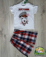 Летний костюм для мальчика: футболка с собакой и клетчатые шорты