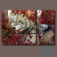 Модульная картина Волк в осенней листве из 3 фрагментов