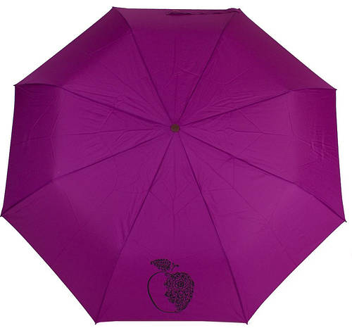 Яркий женский зонт, полуавтомат, антиветер AIRTON (АЭРТОН) Z3631-4188 фиолетовый