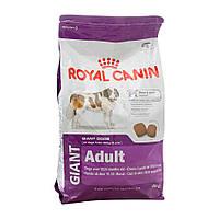 Royal Canin Giant Adult (Джиант Эдалт), 15 кг