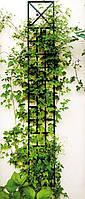 Опора для вьющихся растений пристенная  -  101