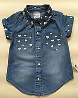 Детская рубашка для девочки р.110-116