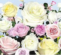 Фотообои на стену для спальни Букет роз