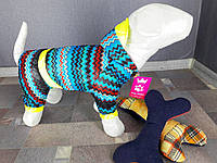 Дождевик цветной Dogs Bomba M-4 размер-6(M)