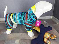 Дождевик цветной Dogs Bomba M-4 размер-8(L)