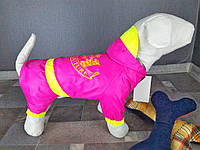 Дождевик Dogs Bomba M-15 размер-6(M)