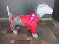 Дождевик Dogs Bomba MN-2 размер-6(M)