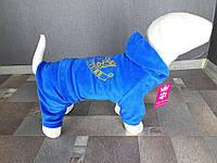 Велюровый костюм Dogs Bomba D-6 размер-6(M)