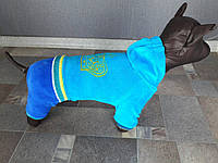 Велюровый костюм Dogs Bomba D-8 размер-3(XS2), фото 1