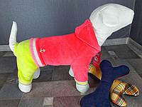 Велюровый костюм Dogs Bomba D-13 размер-3(XS2)