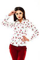 Женская котоновая рубашка в Украине по низким ценам