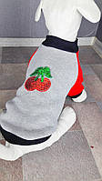 Толстовка Вишенка Dogs Bomba Y-4 размер 4(S)