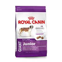 Royal Canin Gigant Junior (Джиант Джуниор), 15 кг