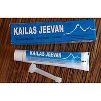 """Крем """"Кайлаш Дживани"""" Kailas (мазь от ожогов, солнечных ожогов)20 грамм"""