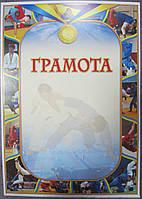 Грамота спортивная (самбо)