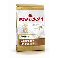 Royal Canin Labrador Retriever Junior (Лабрадор Юниор), 12+2 кг