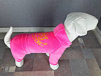 Велюровый костюм Dogs Bomba D-12 размер-3(XS2)