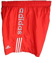 Мужские шорты спорт