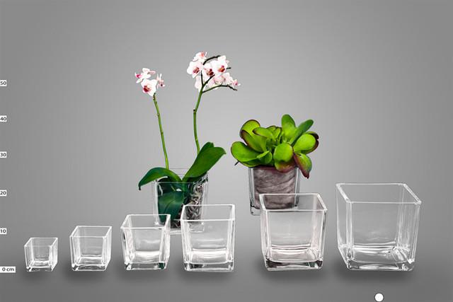 Стеклянный горшок для орхидеи купить - c366