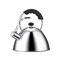Чайник со свистком Tescoma Home Profi, 2л