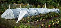 Парник Урожай 6 м, о очень скоро вы сможете насладится своим урожаем
