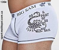Big Sam спортивное белье 1354