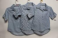 Блузы  джинсовые для девочек