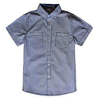 Школьная рубашка с коротким рукавом; 10, 16 лет