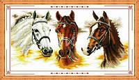 """Набор для вышивки крестом с печатью на ткани 14ст  """"Три лошади"""""""