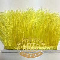Тесьма страусиная  Цвет Yellow Цена за 0.5м