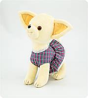 Мягкая игрушка «Собачка в клетчатом платьице» (5 видов)