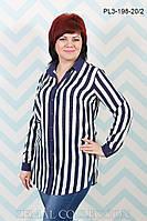 Женская блуза больших размеров  (р.50-58)