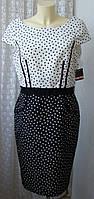 Платье в горошек модное миди Taylor р.46-48 6610