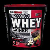 Whey Gainer Vision Nutrition 5 кг 2х2,5 кг (Клубника/Шоколад)