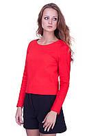 Женская красная короткая трикотажная кофта с молнией на спине