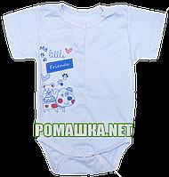 Детский боди-футболка р. 56 ткань КУЛИР 100% тонкий хлопок ТМ Алекс 3087 Голубой-1