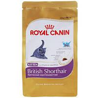 Royal Canin (Роял Канин) Сухой корм для котят британских пород от 4 мес Kitten British Shorthair 400гр