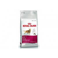 Royal Canin (Роял Канин) Сухой корм для котов Fit 32, 10кг