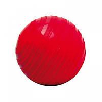 Мяч утяжелитель Togu Stonies 0,5 кг (638051)